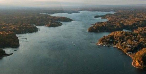 River and treelines chesapeake bay tributaries